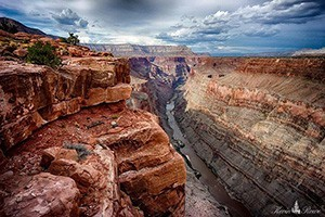 Dreamland Safari Tours : Dreamland Safari Tours has the experience to teach you about Zion National Park!