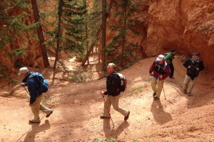 Zion & Grand Canyon Tour | Timberline Adventures