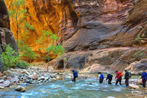 Inn-Based Tours of Zion - Wildland Trekking