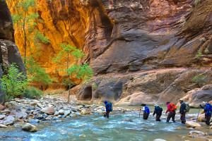 Inn-Based Tours of Zion - Wildland Trekking