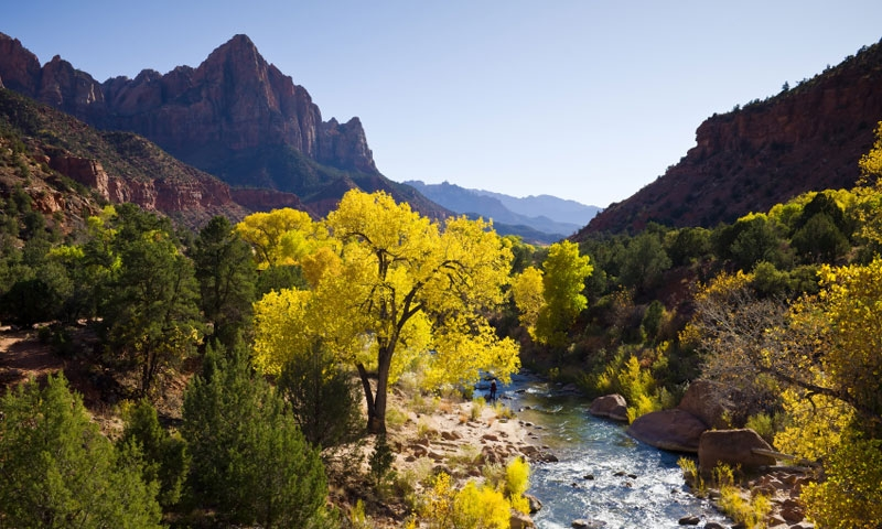 The Virgin River leads to the Watchman in Zion