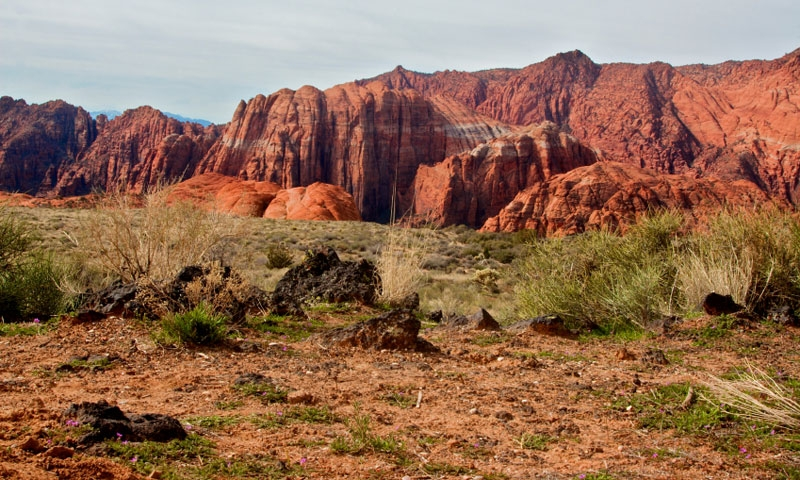 Snow Canyon State Park in Southern Utah