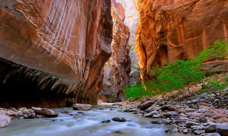 Virgin River Zion Narrows