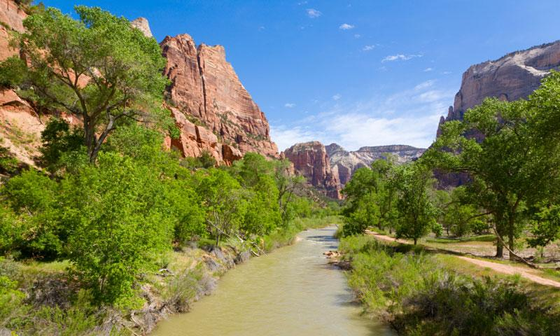 The Virgin River in Zion National Park