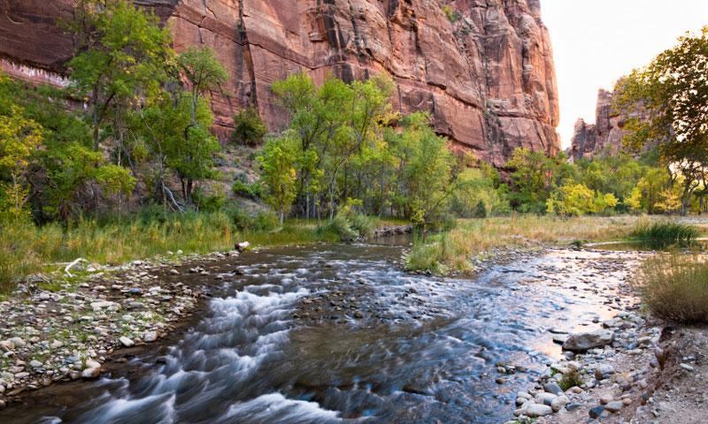 Zion Narrows Virgin River