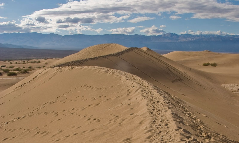 Sand Dune in Death Valley National Park