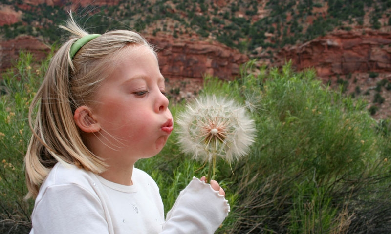 Girl with a flower in Zion National Park