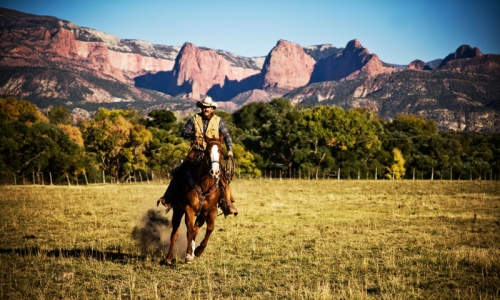 Horseback Riding in front of Zion National Park