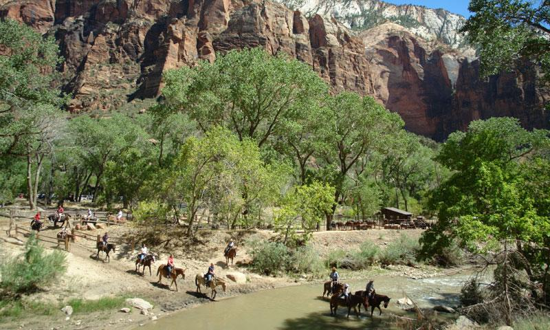 Horseback Riding through the Virgin River in Zion National Park