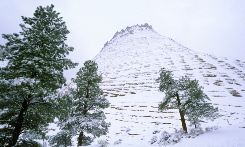 Snow on Checkerboard Mesa in Zion National Park