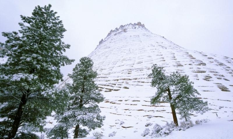 Checkerboard Mesa Utah