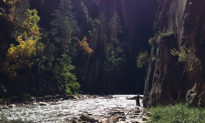 Zion Narrows Hiking