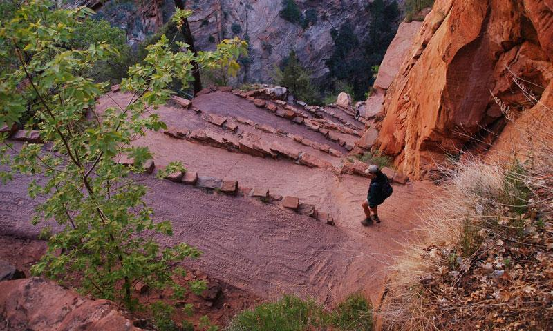 Walters Wiggles on the way to Angels Landing in Zion National Park