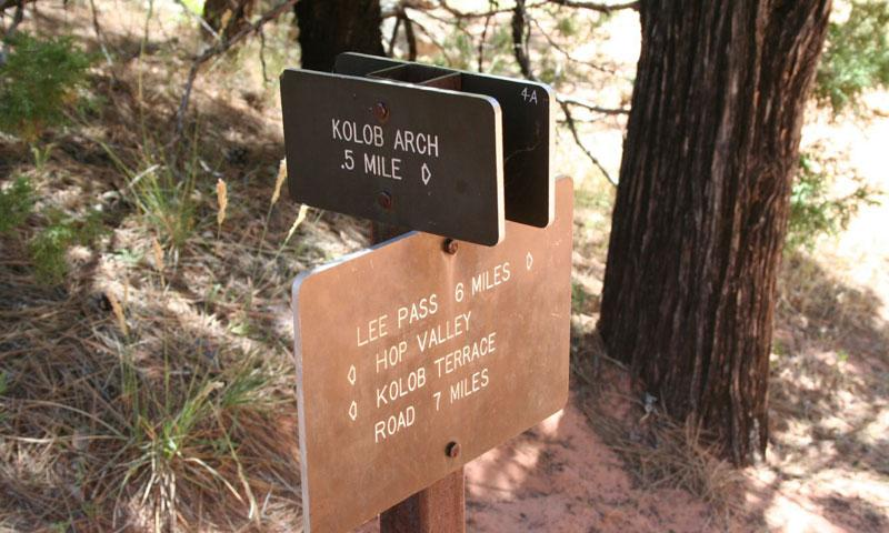 Hiking Trail to Kolob Arch in Zion National Park