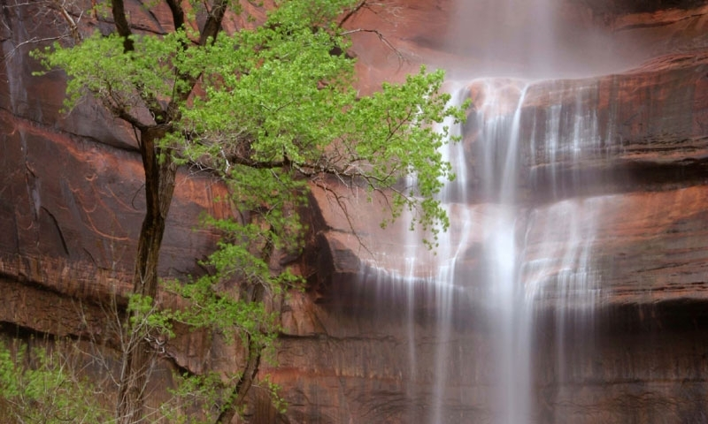 Waterfall at Weeping Rock in Zion National Park