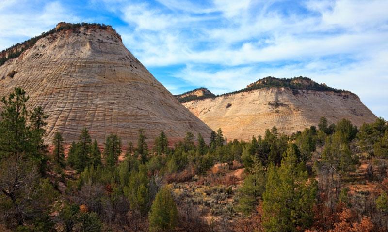 Checkerboard Mesa in Zion National Park