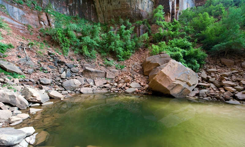 Emerald Pool in Zion National Park