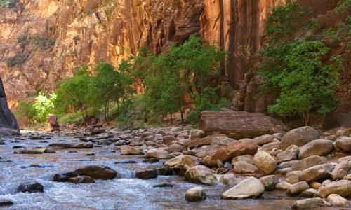 Virgin River The Narrows Zion National Park Utah